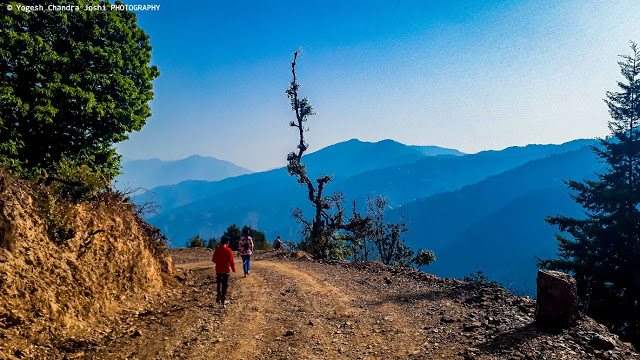 landscape-view-of-dhanaulti