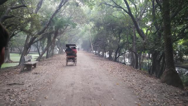 Keoladeo-national-park-cycle-Rickshaw